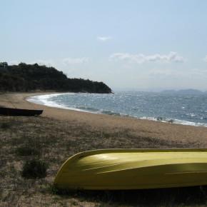 ジェニファー・バートレット / 黄色と黒のボート