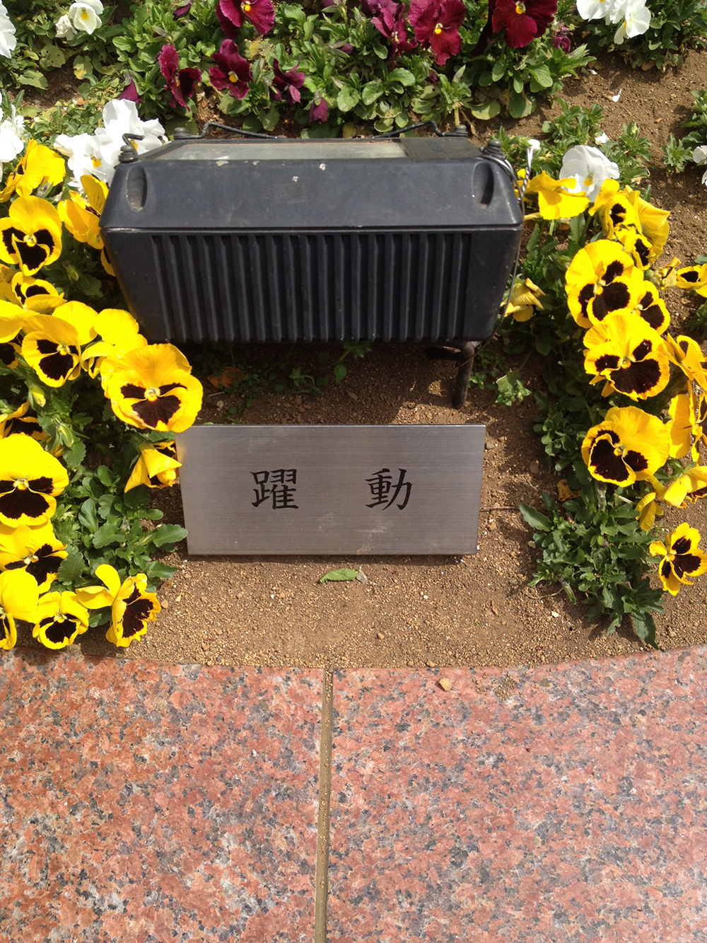 F_yakudou3