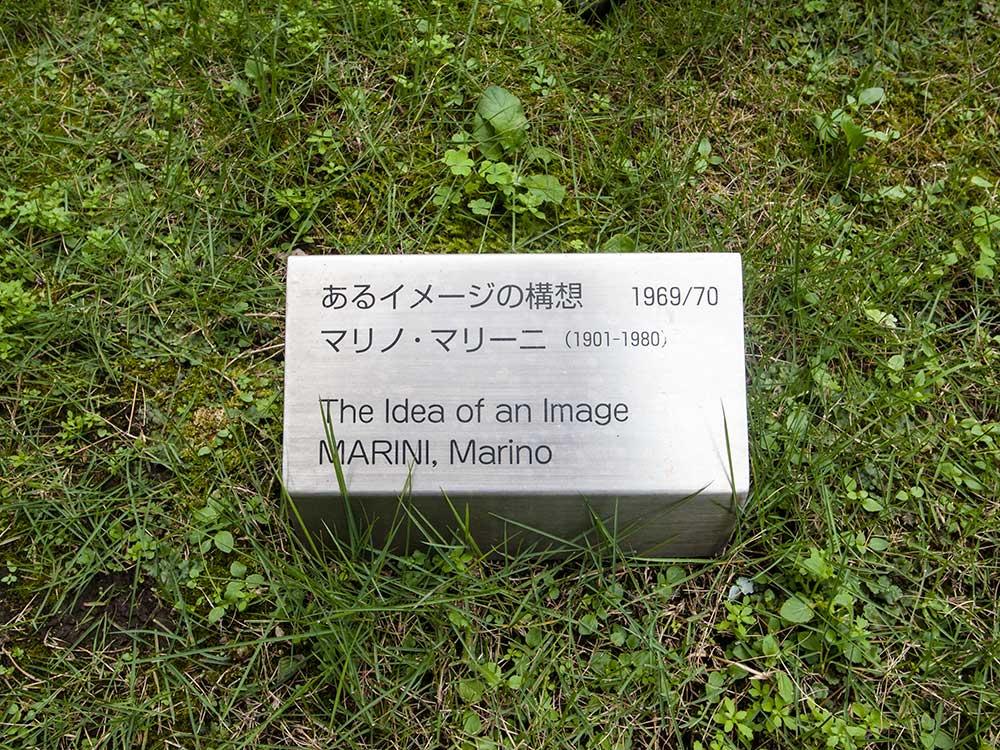 T_marini3
