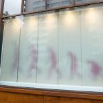 鈴木康広 / 進化の窓