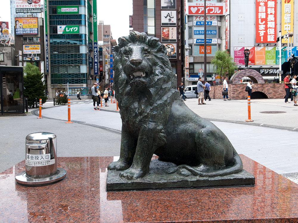 S_lion1