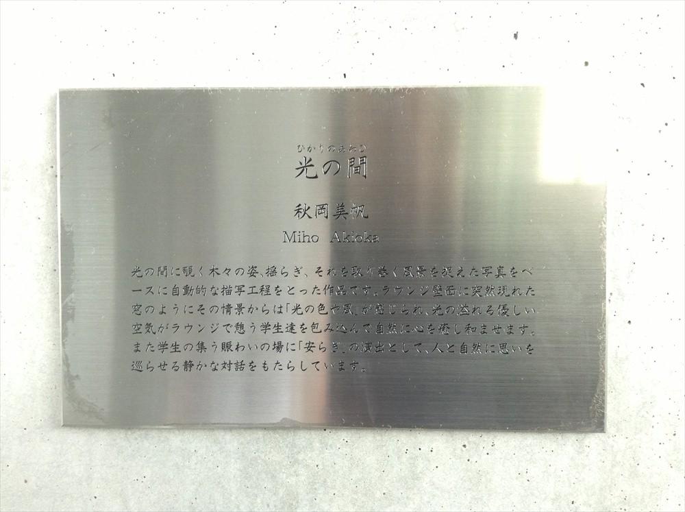 hikari_005