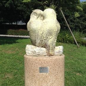 高野浩子 / 恋人鳥
