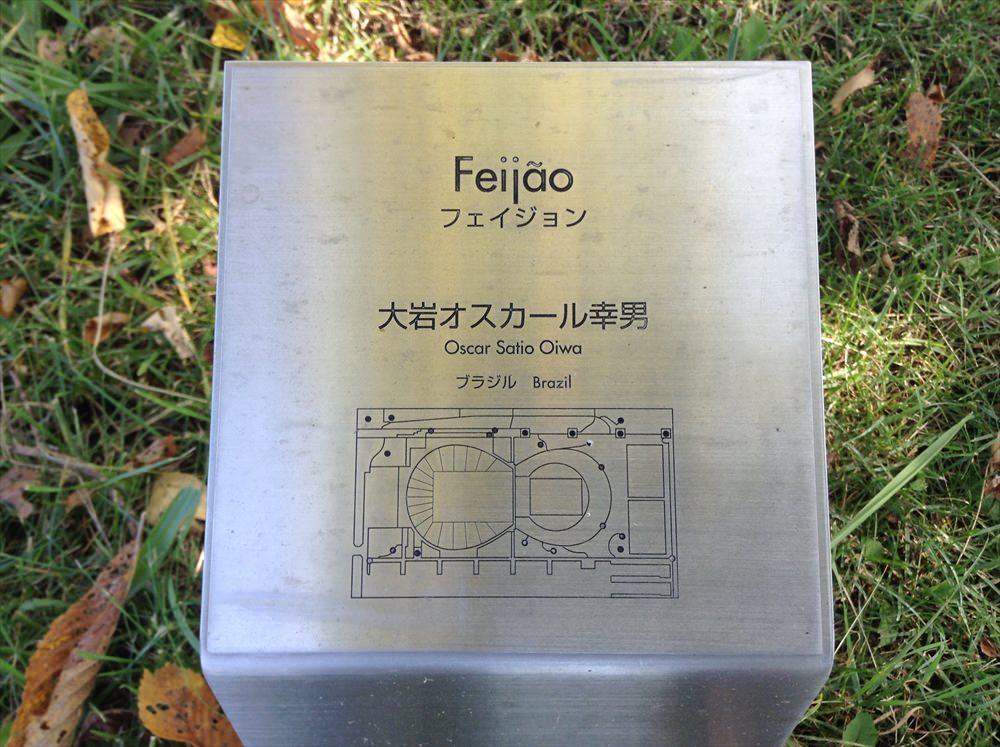 feijao_4