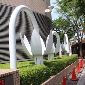 和田政幸 / カタクリ・カタリ  土のひとりごと