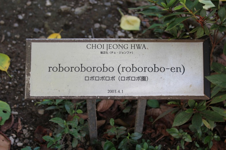 roboroborobo (roborobo-en)