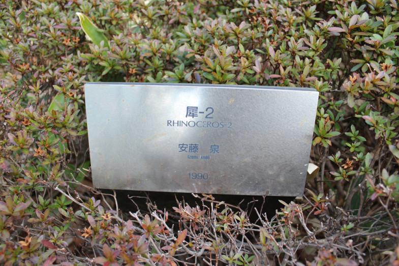 RHINOCEROS-2