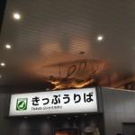 岡本庄三 / 来迎飛天