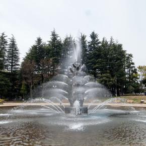 ジョージ 蔦川 / 悦びの泉