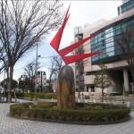 高田洋一 / 石に咲く花