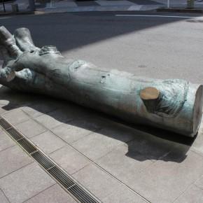 西雅秋 / 遡洄する大木