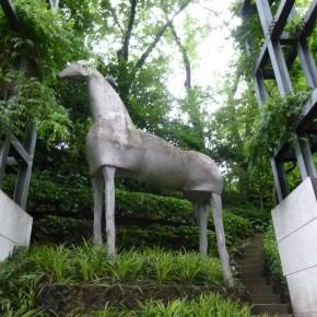 """ミモ・パラディノ / 馬 """"Horse"""""""